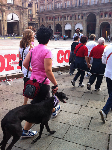 Love the bandana dog and the couple walking hand in hand!