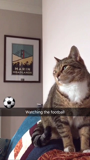 Watching the football