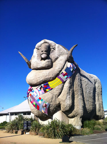 The Big Merino, with winter scarf