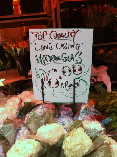 Columbia Road Flower Market, London