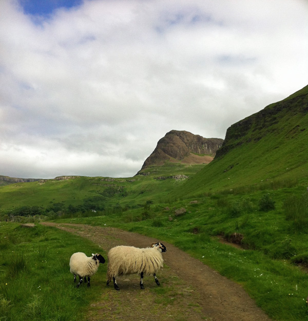 Walking back from Talisker Bay