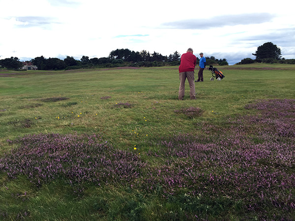 David takes a shot amongst the heather