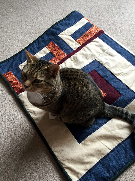 Ziggy and her quilt
