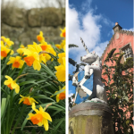 four photos in a row - snow, daffodils, dunfermline's Abbott House, and some autumn leaves