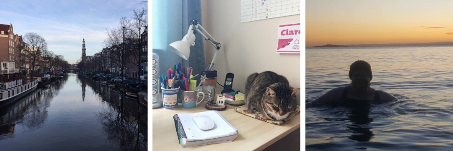 An Amsterdam canal - Ziggy the cat sleeping in an office desk - Shauna swimming in the sea
