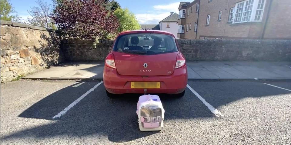 Ziggy the cat is in her carrier, behind a small red car, waiting to go into the vets during lockdown