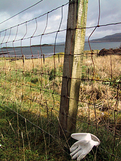 Dunvegan, Isle of Skye, April 2004. The only non-black glove with a non-grey backdrop. But still crap!
